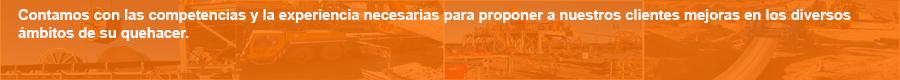 asesoria_revisiones